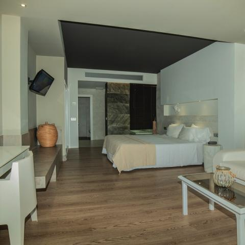 Habitacion Junion Suite